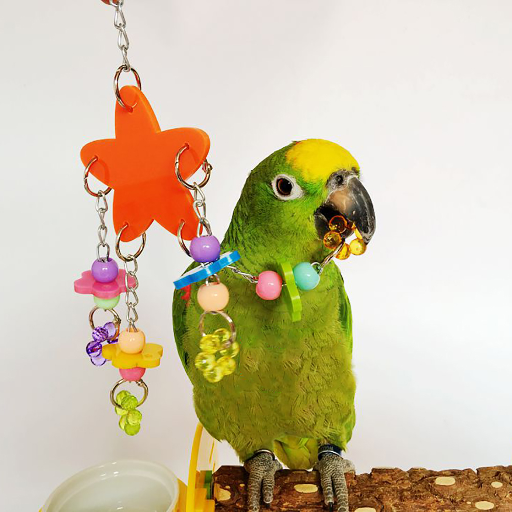 Bird Pet Stand Swing Chewing Beads Stars Flowers Shape Parrot Hanging Play Toy